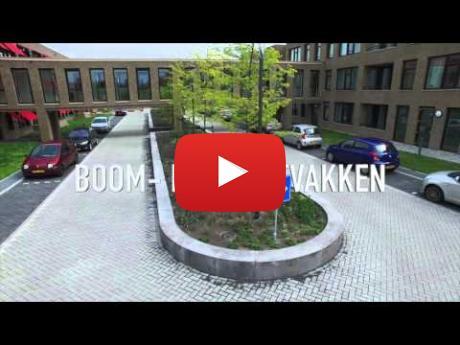 Embedded thumbnail for Betonnen plantenbakken terreininrichting